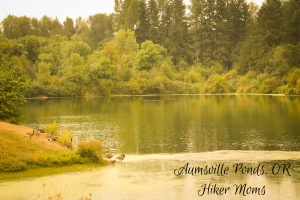Aumsville Ponds