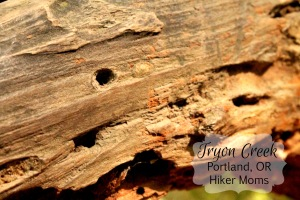 Tryon Creek Hiker Moms