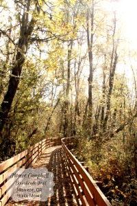 Homer Campbell Memorial Boardwalk Trail, William L. Finley National Wildlife Refuge, Monroe, OR, Hiker Moms
