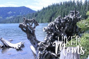 Hiker Moms Hiking Trail Lost Lake Resort Hood River ORegon 1