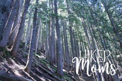 Hiker Moms Hiking Trail Lost Lake Resort Hood River ORegon 10
