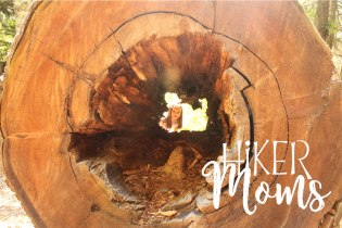 Lost Lake Trail Hiking Hiker Moms Hood River Oregon 18