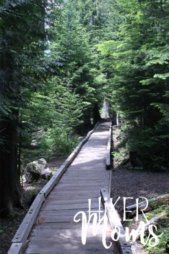 Hiker Moms Hiking Trail Lost Lake Resort Hood River ORegon 5