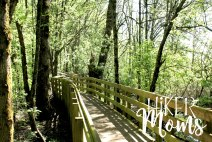 Rail Trail Ankeny Wildlife Refuge South Salem Oregon Hiker Moms Hike Hiking Adventure 10
