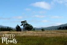 Clay Myers Trail at Whalen Island Park Cloverdale Oregon Coastal Hikes Beautiful Beach fields for days