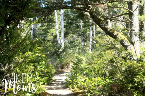 Clay Myers Trail at Whalen Island Park Cloverdale Oregon wooded trailCoastal Hikes Beautiful Beach fields for days