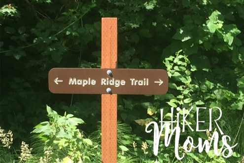 Maple Ridge Trail Estacada ORegon Milo McIver STate Park HIker Moms 1