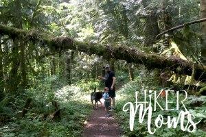 Maple Ridge Trail Estacada ORegon Milo McIver STate Park HIker Moms 2