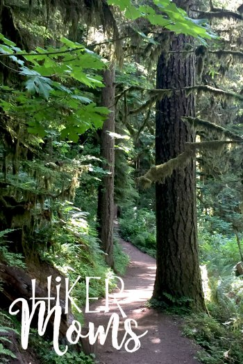 Hiker Moms Silver Falls State Park Silverton Sublimity Oregon Twin Falls Upper North Falls Middle North Falls Winter Falls hike Kids large trees on the trail