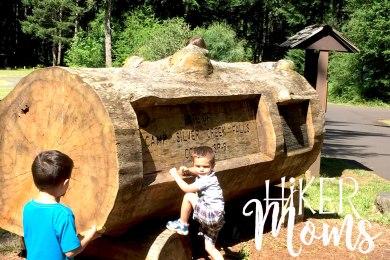 Hiker Moms Silver Falls State Park Silverton Sublimity Oregon Twin Falls Upper North Falls Middle North Falls Winter Falls hike Kids large log