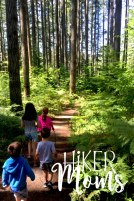 Hiker Moms Silver Falls State Park Silverton Sublimity Oregon Twin Falls Upper North Falls Middle North Falls Winter Falls hike Kids travel trail