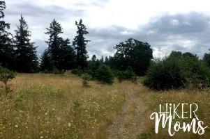 Virginia Lake Sauvie Island Portland Oregon Hiker Moms Hike Oregon Hiking kids trail feature meadow cows