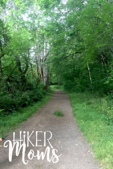 Virginia Lake Sauvie Island Portland Oregon Hiker Moms Hike Oregon Hiking kids trail feature cute trail