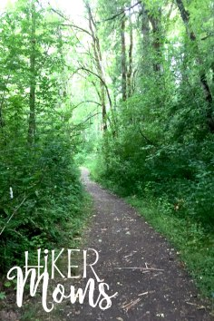 Virginia Lake Sauvie Island Portland Oregon Hiker Moms Hike Oregon Hiking kids trail feature 14