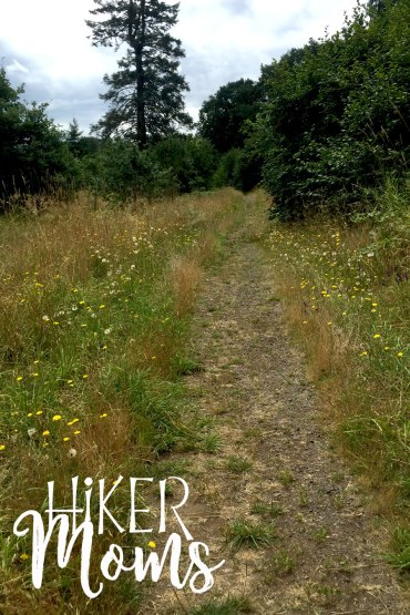 Virginia Lake Sauvie Island Portland Oregon Hiker Moms Hike Oregon Hiking kids trail feature daisies and dandelions