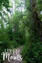 Virginia Lake Sauvie Island Portland Oregon Hiker Moms Hike Oregon Hiking kids trail feature old growth