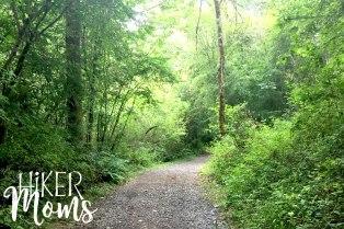 Virginia Lake Sauvie Island Portland Oregon Hiker Moms Hike Oregon Hiking kids trail feature trail view