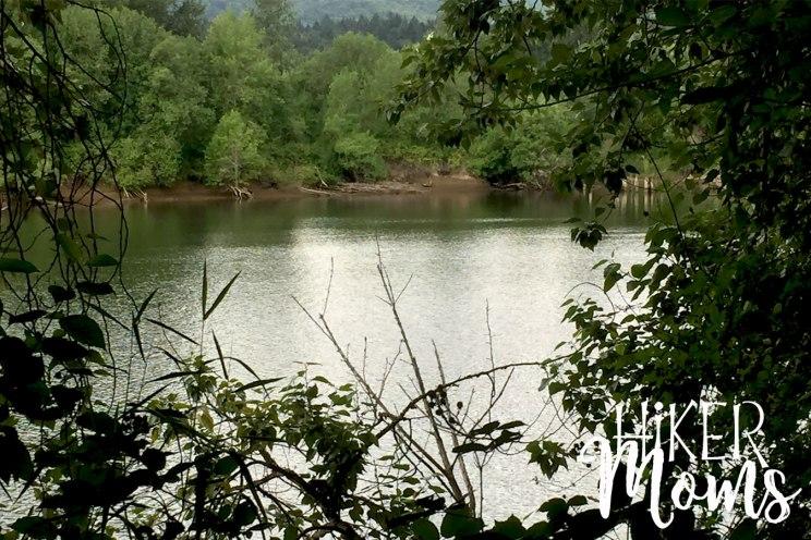 Virginia Lake Sauvie Island Portland Oregon Hiker Moms Hike Oregon Hiking kids trail feature multnomah channel