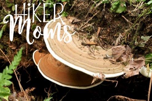 Latourell Falls Portland Oregon Hiker Moms Sign Salem Hike mushrooms