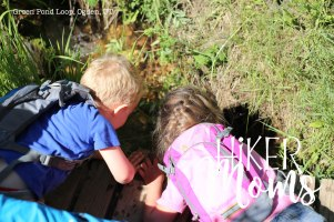 Green Pond Loop Ogden Utah 2Hiking Hiker Moms