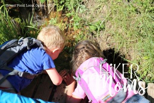 Green Pond Loop Ogden Utah 2Hiking Hiker Moms