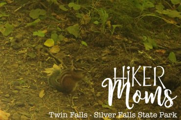 Hiker Moms, Silver Falls, Chipmunks, Waterfalls, Smooth Path, Tree Roots, State Park, Trail of ten falls, 10, Falls, Oregon, Salem, Silverton, River, Rocks, Beautiful, Hike