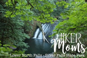 Lower North Falls, Silverton, Oregon, Salem, Silver Falls,