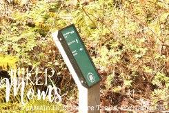 Tualatin Hills Nature Park, Portland, Beaverton, Map, Oregon, Cedar Hills, Ponds, Ducks, trails, boardwalk, running, walking, ADA Accessible