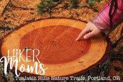 Tualatin Hills Nature Park, Portland, Beaverton, Tree Stump Rings, Oregon, Cedar Hills, Ponds, Ducks, trails, boardwalk, running, walking, ADA Accessible