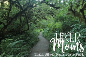 Hiker Moms, Silver Falls, Gorgeous Treelined path, Waterfalls, Smooth Path, Tree Roots, State Park, Trail of ten falls, 10, Falls, Oregon, Salem, Silverton, River, Rocks, Beautiful, Hike