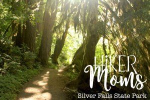 Hiker Moms, Silver Falls, Sunlight through the trees, Waterfalls, Smooth Path, Tree Roots, State Park, Trail of ten falls, 10, Falls, Oregon, Salem, Silverton, River, Rocks, Beautiful, Hike