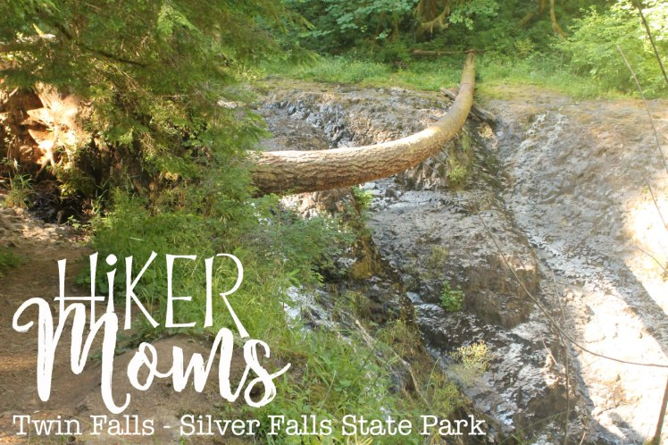 Twin Falls, Silverton, Salem, Oregon, Silver Falls, State Park