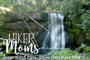 Upper North Falls, Gorgeous, Logs, Pool, Swim,Photography, Salem, Oregon, Silverton, Silver Falls, State park, HikerMoms, Hike, Oregon, Kids, Outside