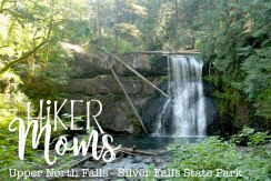 Upper North Falls, Logs, Pool, Swim,Photography, Salem, Oregon, Silverton, Silver Falls, State park, HikerMoms, Hike, Oregon, Kids, Outside