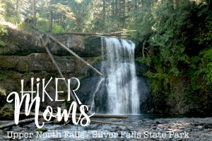 Upper North Falls, Logs, Pool, Swim, Salem, Oregon, Silverton, Silver Falls, State park, HikerMoms, Hike, Oregon, Kids, Outside