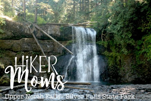 Upper North Falls, Logs, Pool, Swim, Salem, Oregon, Silverton, Silver Falls, State park, HikerMoms, Hike, Oregon, Kids, Outside