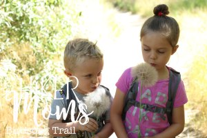 Birdsong, Trail, cute, super, explore, make, a, wish, ants, feel, grandparents, Ogden, Utah, Hike, Hikermoms, Hiking, with, kids, easy, trail, narrow