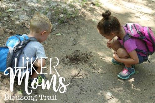 Birdsong, Trail, cute, super, explore, ants, feel, grandparents, Ogden, Utah, Hike, Hikermoms, Hiking, with, kids, easy, trail, narrow