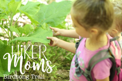 Birdsong, Trail, cute, super, explore, feel, grandparents, Ogden, Utah, Hike, Hikermoms, Hiking, with, kids, easy, trail, narrow