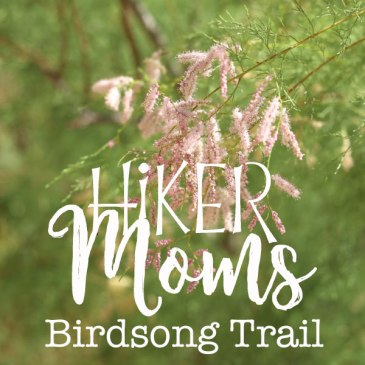 Birdsong Trail, Ogden, Utah, Hike, Mom, Kids, Easy, Trail, HIkermoms, Flowers, Feature