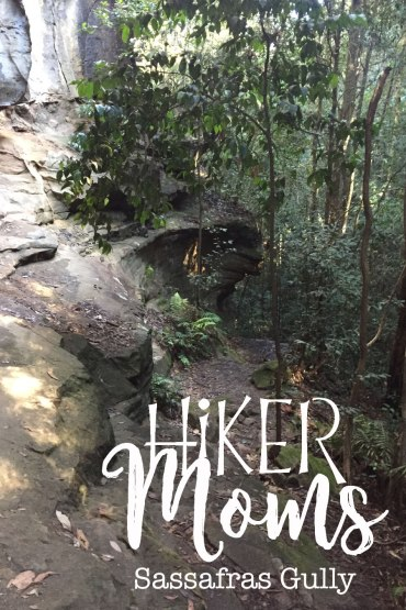 Sassafras Gully, HIkerMoms, Leaves, Springwood, Rock, Sign, Path, Trail, Australia, New South Wales, Hike, Moms, Kids, Babywearing, Map