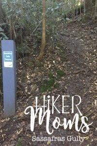 Sassafras Gully, HIkerMoms, Springwood, Rock, Path, Trail, Australia, New South Wales, Hike, Moms, Kids, Babywearing, Map