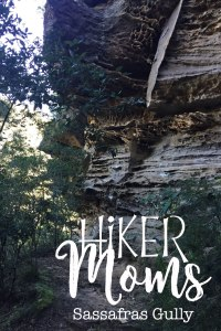 Sassafras Gully, HIkerMoms, Springwood, Rock, Australia, New South Wales, Hike, Moms, Kids, Babywearing, Map