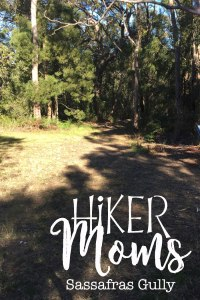 Sassafras Gully, HIkerMoms, Springwood, Start, Australia, New South Wales, Hike, Moms, Kids, Babywearing, Map