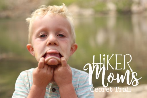 Cecret Lake Trail, Salt Lake City, Another one, Cute Kids, Flowers, Scenery, Group Trip, Cottonwood Canyon, Hike, Backpack, Carrier, Infants, Hikermoms, Hiking, Trails, Group, Family, Kids, Mom, Dad