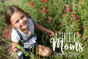 Cecret Lake Trail, Salt Lake City, Cute Kids, Flowers, Scenery, Group Trip, Cottonwood Canyon, Hike, Backpack, Carrier, Infants, Hikermoms, Hiking, Trails, Group, Family, Kids, Mom, Dad