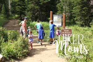 Cecret Lake Trail, Salt Lake City, Group Trip, Cottonwood Canyon, Hike, Backpack, Carrier, Infants, Hikermoms, Hiking, Trails, Group, Family, Kids, Mom, Dad